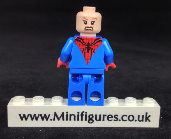 Arachne Custom Minifigure Back