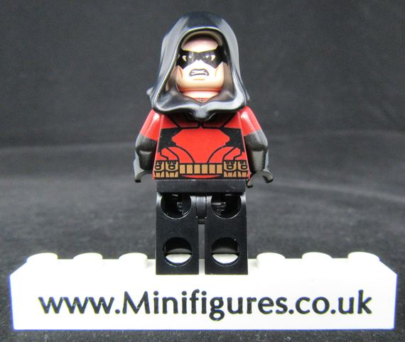 Robin Dragon Brick Custom Minifigure