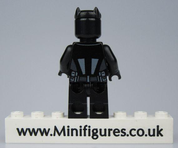 Wildcat LeYiLeBrick Custom Minifigure