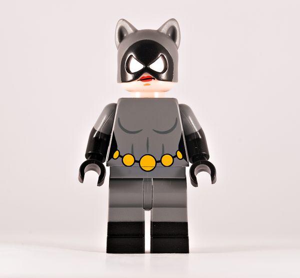 Thieving Feline BF Custom Minifigure